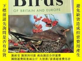 二手書博民逛書店英文原版罕見博物學家 鳥類圖鑑Field Naturalist