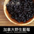 加拿大 野生藍莓 (250±5克) 全館購物滿千免運 農本多勤 故鄉園有限公司