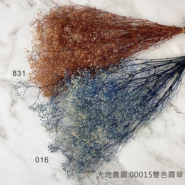 日本進口大地農園 00015 雙色霞草 不凋花材-乾燥花圈 乾燥花束 手作素材 室內擺飾-半束