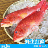 【台北魚市】 野生大紅條(燕條)  580g±10%