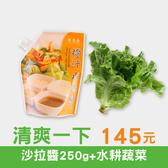 清爽一下│橙汁水果醬(250g)+水耕蔬菜1款(隨機) 只要145元!