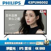 ★送2好禮★PHILIPS飛利浦 43吋4K UHD連網液晶顯示器+視訊盒43PUH6002