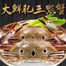 【愛上海鮮】大鮮肥三點蟹20隻組(250g±10%/隻)