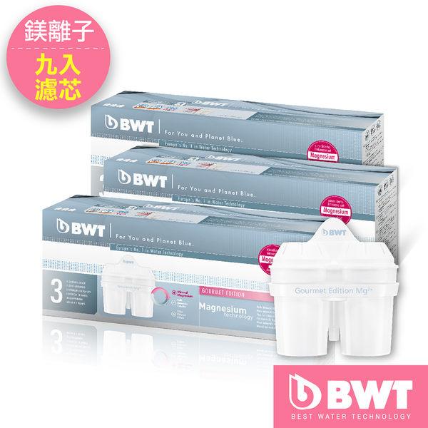【BWT德國倍世_總代理】Mg2+鎂離子8周長效濾芯(九入組)