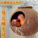 鳥窩牡丹虎皮珍珠文鳥窩椰子殼窩鸚鵡窩保暖椰殼鳥窩鸚鵡窩大小創意 智慧 618狂歡