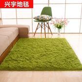 加厚絲毛簡約現代地毯客廳臥室茶幾沙發榻榻米床邊可定制滿鋪地毯63*160公分
