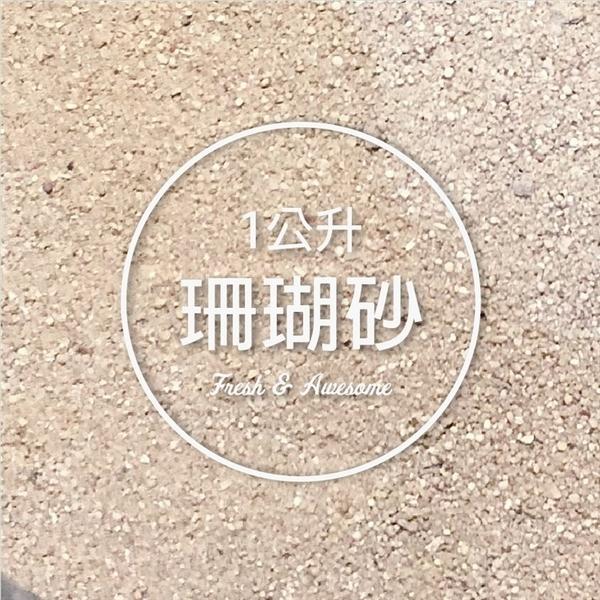 CARMO頂級裝飾超細珊瑚砂(1L) 多肉鋪面介質/水族底砂【C002021】
