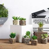 創意家居仿真盆景裝飾品擺件客廳植物北歐衛生間假多肉綠植小盆栽  igo 卡布奇諾