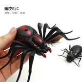遙控蜘蛛 螞蟻 蟑螂創意新奇整蠱仿真動物玩具送朋友生日禮物