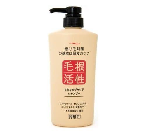 日本 JUNYAKU純藥馬油株式會社 毛根活性健康頭皮洗髮精 550ml