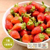 沁甜果園SSN.苗栗大湖草莓-1號果(共2盒)﹍愛食網