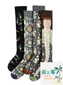 小腿襪法國棉襪女長筒潮襪長款網美街頭滑板棉襪 風之海