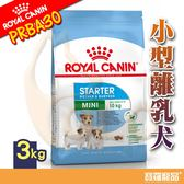 SHN皇家PRBA30小型離乳犬MNS 3kg【寶羅寵品】