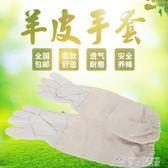 蜂具養蜂專用工具新品防蜂羊皮手套衣防蜜蜂服防護服配件全套YYJ  夢想生活家