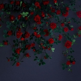 仿真玫瑰花藤假花裝飾遮擋塑料藤蔓