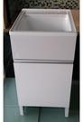 【麗室衛浴】壓克力洗衣槽+鋼烤櫃體  也可以當寵物洗澡盆 DY-S4001 尺寸 48*55*H90CM(含櫃體)