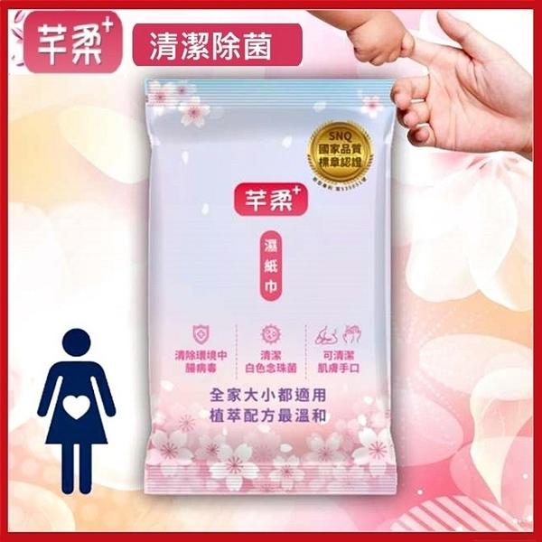 芊柔+ Plus升級版(10包裝) 清除腸病毒 濕紙巾10抽/包 清潔肌膚抗菌三合一【KD03006】99愛買小舖