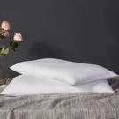 枕芯帶枕套蕎麥枕頭雙人蕎麥皮大人護頸椎枕助睡眠單人一對裝家用 蘿莉小腳丫