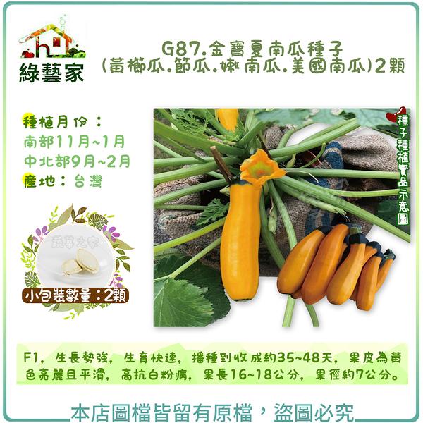 【綠藝家】G87.金寶夏南瓜種子(黃櫛瓜.節瓜.嫩南瓜.美國南瓜) 2顆