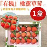 預購-竹青亭農場-特殊水蜜桃風味•日本品種桃薰『有機』草莓 15入/250g/盒(免運宅配)