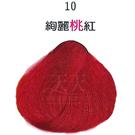 【挑染專用】彩靈EURO 彩色漂粉15g-10絢麗桃紅 [85916]