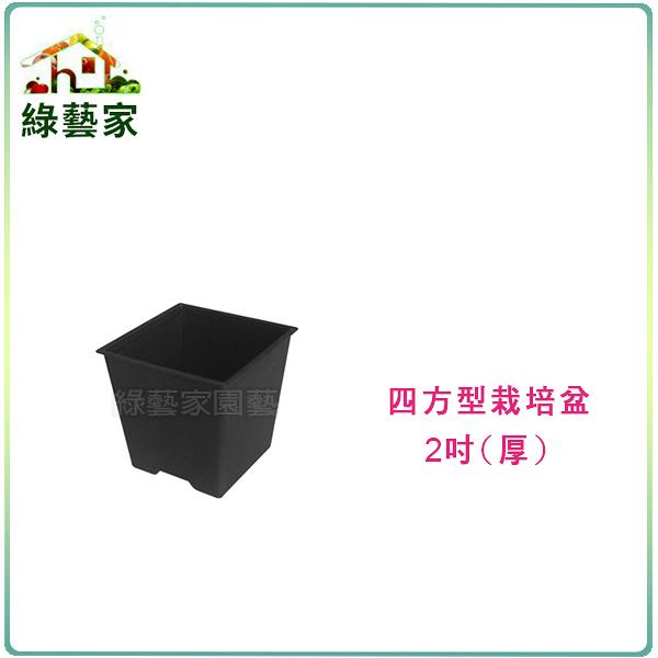【綠藝家】四方型栽培盆2吋-黑色(厚)