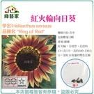 【綠藝家】H48.紅火輪向日葵種子5顆...