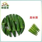 【綠藝家】G10.黃秋葵種子50顆(品種...
