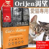 【🐱🐶培菓寵物48H出貨🐰🐹】》Orijen 渴望》野牧鮮雞愛貓飼料-5.4kg 送開運肉泥貓罐*2 (蝦)
