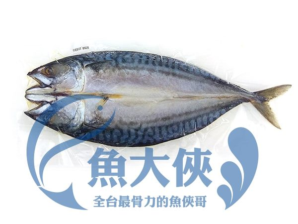 E3【魚大俠】FH056日式料理專用薄鹽挪威鯖魚一夜干300G/尾 整尾有頭尾