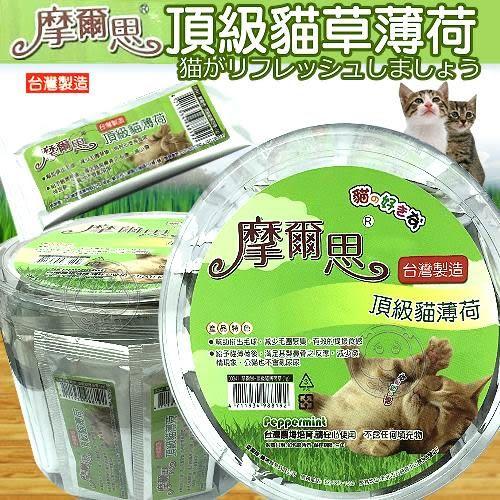 【 zoo寵物商城】摩爾思頂級貓草薄荷1g*1包