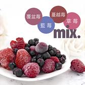 【莓果工坊】森林莓果(內容物-蔓越莓+野生藍莓+覆盆子+草莓)1000公克