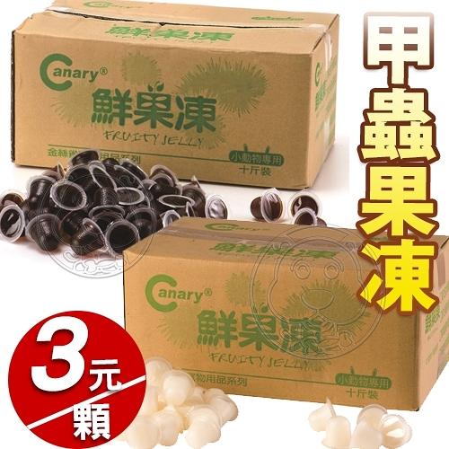 【培菓幸福寵物專營店】Canary A-S356《甲蟲》黑糖蜂蜜果凍 高蛋白乳酸果凍-1粒入