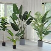 仿真植物旅人蕉假綠植盆栽擺件大室內花天堂鳥樹客廳北歐植物裝飾 NMS生活樂事館