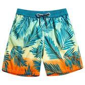 泳褲男 游泳短褲 泳裝 沙灘褲 速乾
