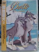 影音專賣店-B13-025-正版DVD【雪地靈犬2】-卡通動畫