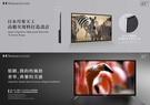 【HOStation】 65吋 4K HDR 無線連網智慧型電視 強強滾