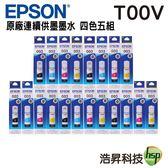 EPSON T00V 四色五組 原廠盒裝填充墨水 適用L3110 L3150 L1110 L3116 L5190 L5196