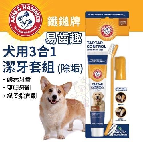 *KING*ARM&HAMMER鐵鎚牌 易齒趣 犬用3合1潔牙套組(除垢)‧深層清潔牙齒‧犬用