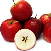 【果之家】日本少女紅顏姬蘋果XL特級13顆禮盒(約8.3台斤單顆約350公克)
