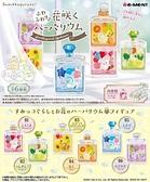 日本 Re-ment 盒玩 角落生物 花朵標本瓶 全六款 一組整盒販售 COCOS TU003