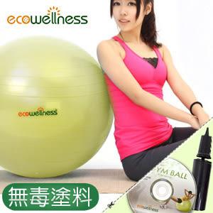 瑜珈球│【ecowellness】加厚防爆26吋韻律球(環保材質)65cm健身球大球運動用品推薦