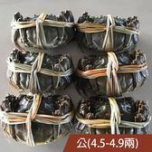 (公6隻)國產大閘蟹4.5-4.9兩含運組