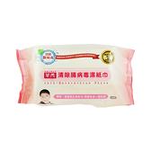 芊柔 清除腸病毒濕巾 80抽【BG Shop】濕紙巾