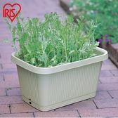 花盆愛麗思IRIS 陽台盆景蔬菜種植盆室內長條大花盆種菜塑膠花盆深型