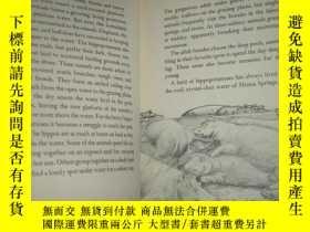 二手書博民逛書店外文原版《The罕見hippopotamus》(河馬 插圖本Y2