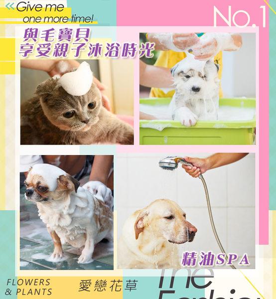 【愛戀花草】 夜來香精油 護色瑩彩寵物沐浴乳《1000ML/六瓶組》