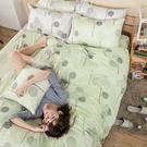 床包 / 單人【晨曦之柏】含一件枕套 100%精梳棉 戀家小舖台灣製AAS101