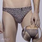 男款豹紋內褲 小尺寸三角褲 略微透明情趣內褲-愛衣朵拉