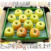 【果之蔬-全省免運】日本青森名月蜜蘋果x1箱(20顆/箱 每箱約5kg±10%含箱重 )